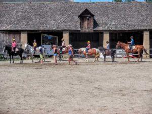 colonie équitation